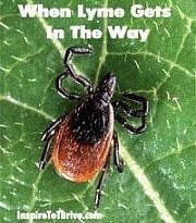 When Lyme Gets in the Way of Blogging and Much More