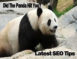 Google Panda is Back at it Again – 6 Things You Need to Know!