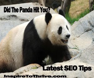 Google Panda is Back