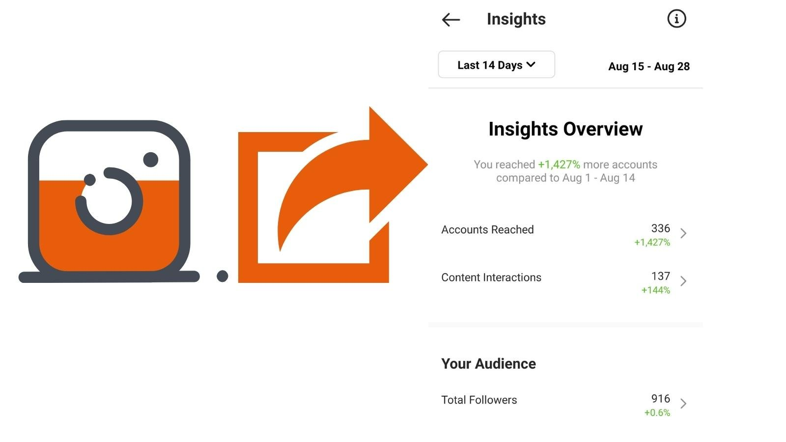 check your Instagram insights